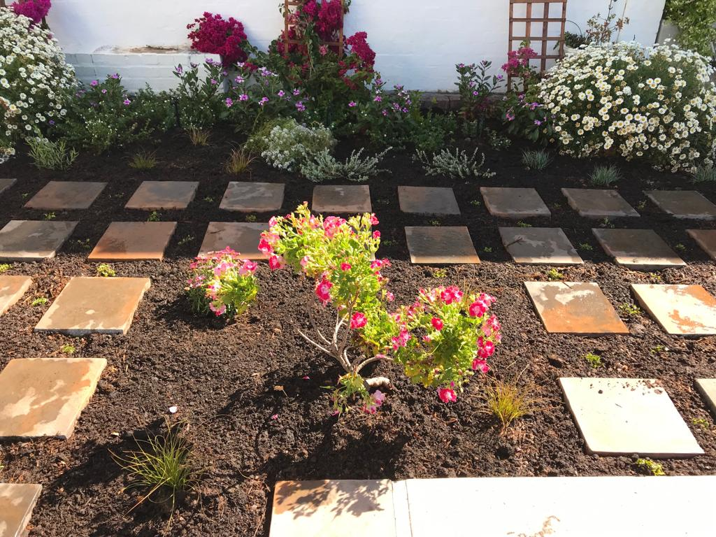 Landscaping Cape Town - Work4