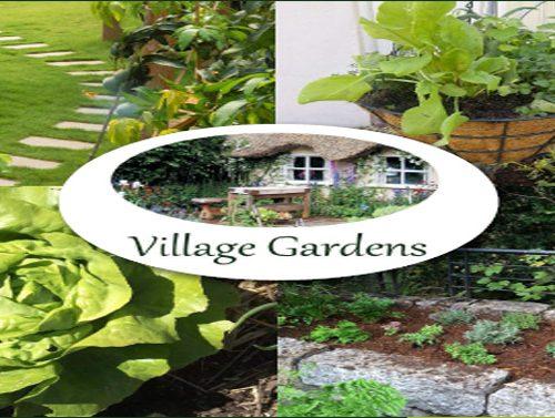 Village Gardens | Landscaping Cape Town - portfolio image
