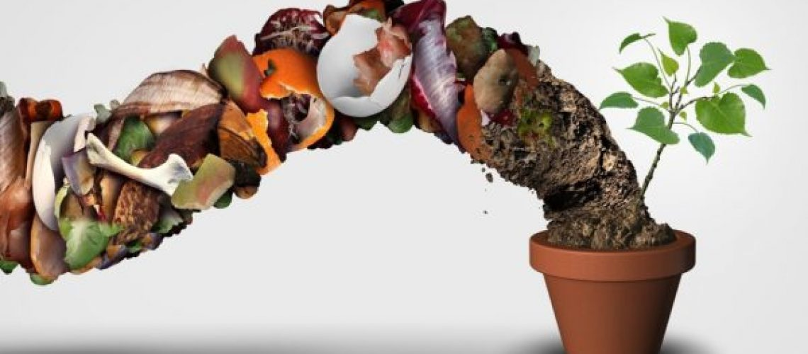 Make your own compost