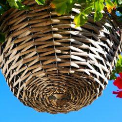 basket-4561216_960_720