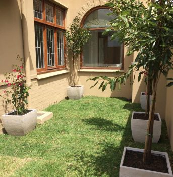Village Gardens | Landscaping Cape Town | garden after 3