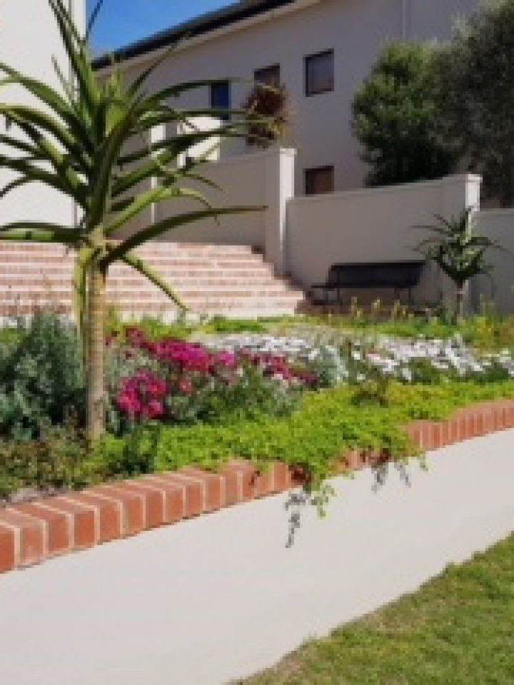 Village Gardens | Landscaping Cape Town | example of work done